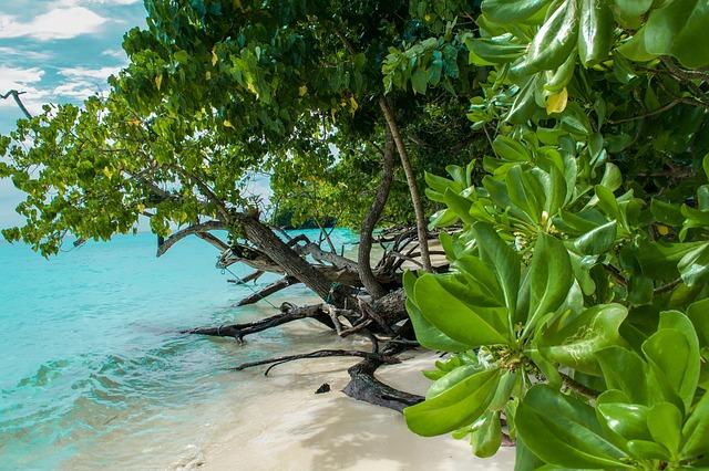 island- pláž