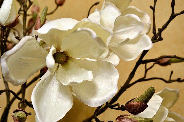 Umelé kvety sú ako živé