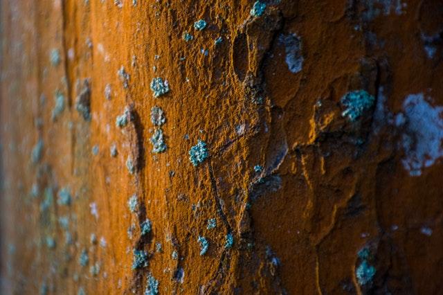 Zhrdzavená stena obrastená lišajníkmi.jpg